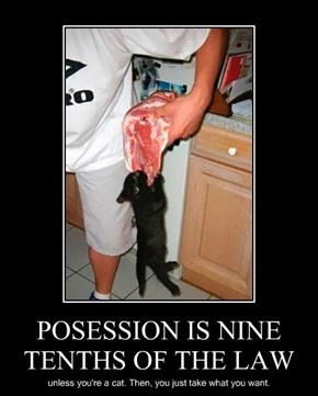 POSESSION IS NINE TENTHS OF THE LAW