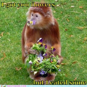 I got you flowers       ...but I eated some