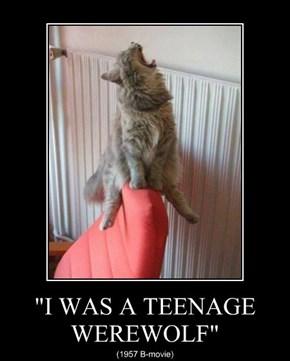 """I WAS A TEENAGE WEREWOLF"""
