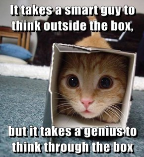 It takes a smart guy to think outside the box,  but it takes a genius to think through the box