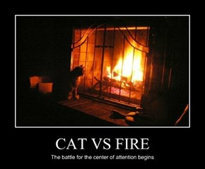 CAT VS FIRE