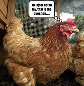 Eggistential