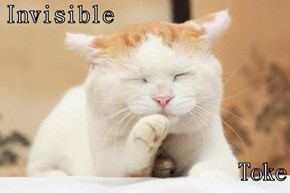 Invisible   Toke