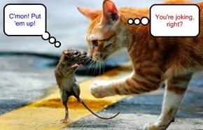 I'm warning ya, cat!