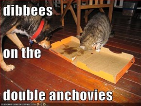 dibbees on the double anchovies