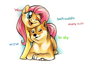 wow. such lucky. much jelly. very want.