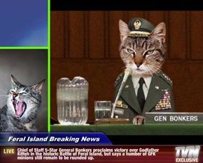 Feral Island Breaking News - Chief of Staff 5-Star General Bonkers proclaims victory over Godfather Kitteh in the historic Battle of Feral Island, but says a number of GFK minions still remain to be rounded up.