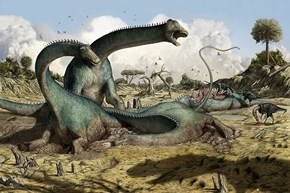 Diplodocid Found in South America