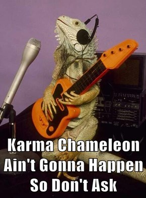 Karma Chameleon Ain't Gonna Happen So Don't Ask