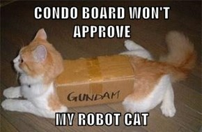CONDO BOARD WON'T APPROVE  MY ROBOT CAT
