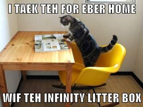 I TAEK TEH FOR EBER HOME  WIF TEH INFINITY LITTER BOX