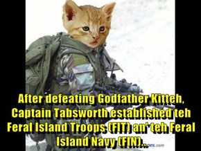 After defeating Godfather Kitteh, Captain Tabsworth established teh Feral Island Troops (FIT) an' teh Feral Island Navy (FIN)..