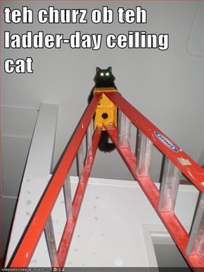 teh churz ob teh ladder-day ceiling cat