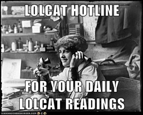LOLCAT HOTLINE  FOR YOUR DAILY LOLCAT READINGS