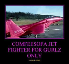 COMFEESOFA JET FIGHTER FOR GURLZ ONLY