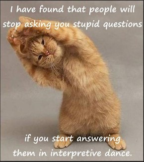 I have found that people will stop asking you stupid questions  if you start answering                                                          them in interpretive dance.