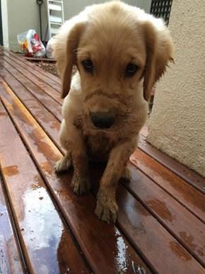 I Admit it...I Need a Bath