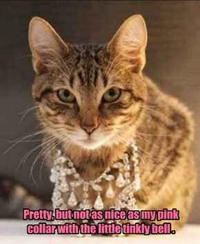 Pretty, but not as nice as my pink collar with the little tinkly bell .