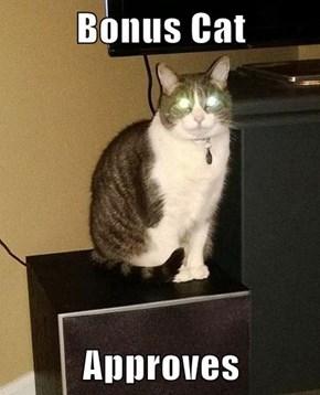 Bonus Cat  Approves