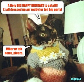 BREAKING CHEEZPEEP NEWS - cataff.. Happy Happy Birfdae to youz!!