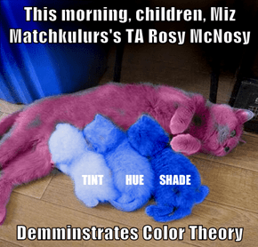 This morning, children, Miz Matchkulurs's TA Rosy McNosy  Demminstrates Color Theory