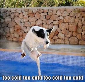 too cold too cold too cold too cold