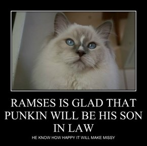 RAMSES IS GLAD THAT PUNKIN WILL BE HIS SON IN LAW