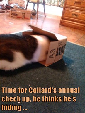 Time for Collard's annual check up, he thinks he's hiding ...