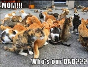 MOM!!!  Who's our DAD???