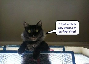 I tawt grabity only worked on de first floor!