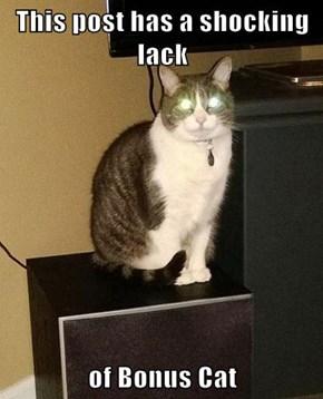 This post has a shocking lack  of Bonus Cat