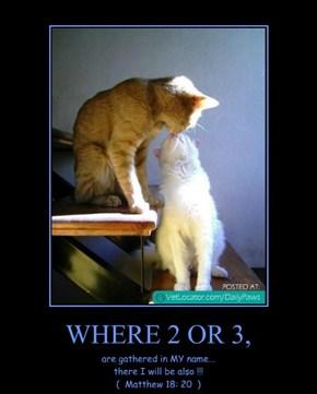 WHERE 2 OR 3,