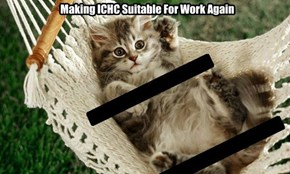 Making ICHC Suitable For Work Again