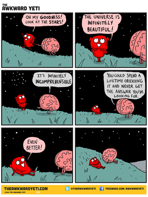 The Heart And The Brain Have a Conversation Regarding The Stars