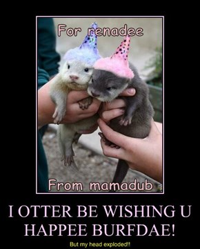 I OTTER BE WISHING U HAPPEE BURFDAE!