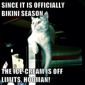 SINCE IT IS OFFICIALLY BIKINI SEASON...  THE ICE-CREAM IS OFF LIMITS, HOOMAN!