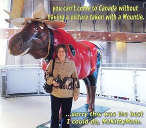 Mountie and a moose in one picture. Can't get more Canadian then that!