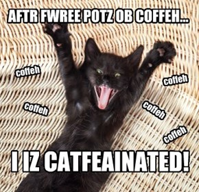 I IZ CATFEAINATED!