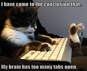 I have come to the conclusion that..  My brain has too many tabs open.