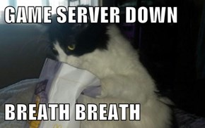 GAME SERVER DOWN  BREATH BREATH