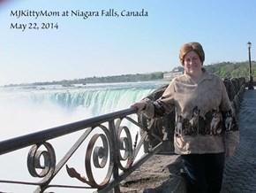 MJKittyMom's Canada trip!
