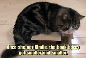 Once  she  got  Kindle,  the  book  boxes   got  smaller  and  smaller.