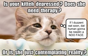 Learn the difference between kitteh depression and kitteh planning.