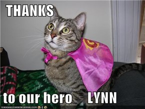 THANKS  to our hero     LYNN