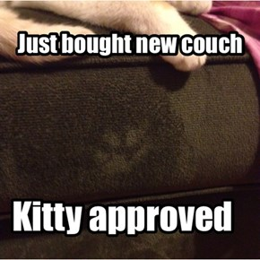 She likes it!