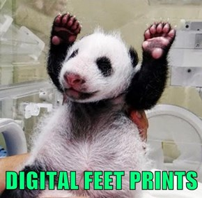 DIGITAL FEET PRINTS