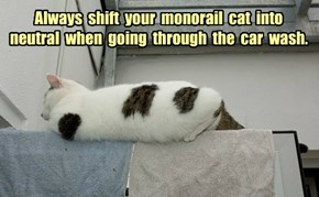 Always  shift  your  monorail  cat  into  neutral  when  going  through  the  car  wash.