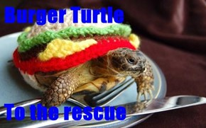 Burger Turtle  To the rescue