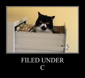 FILED UNDER C