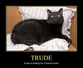 TRUDE